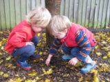 Sawston Nursery 7rq